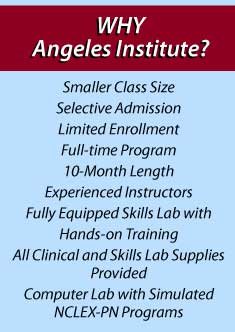 Why Angeles Institute
